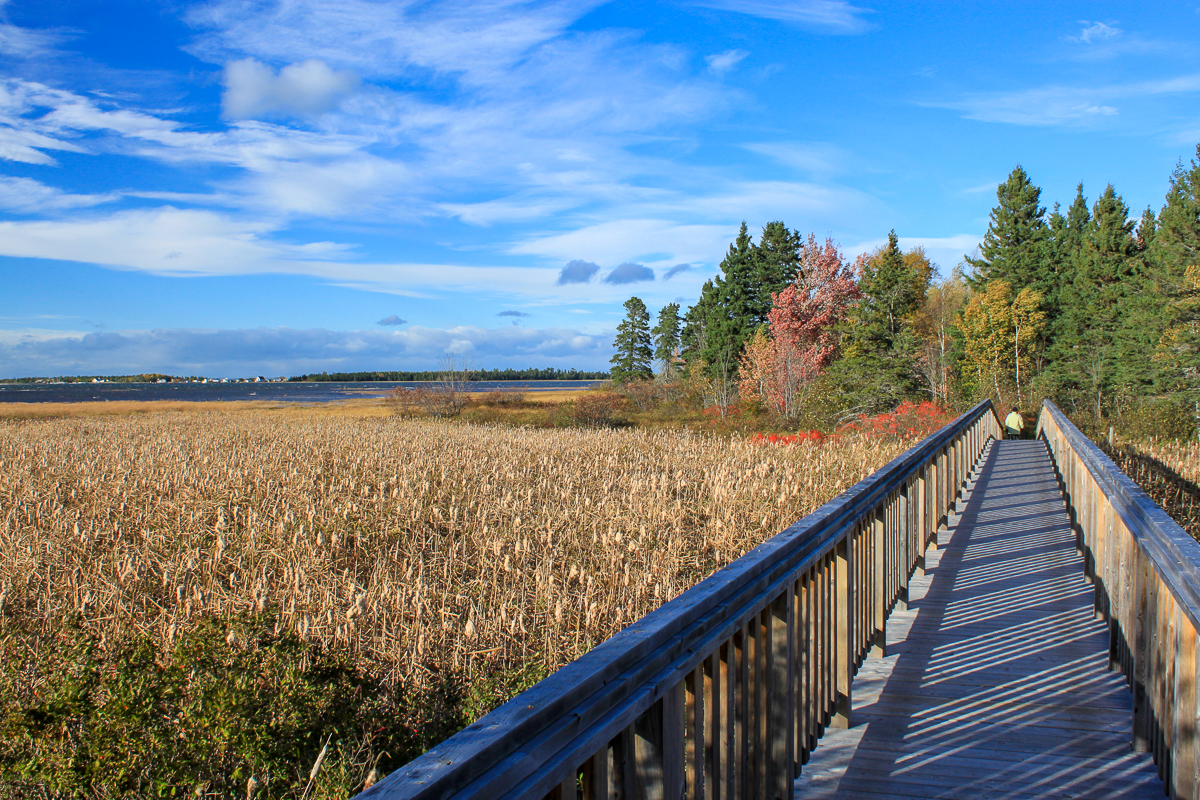 Boardwalk along Bathurst Bay