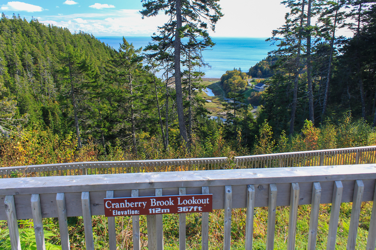 View from the Cranberry Brook Lookout