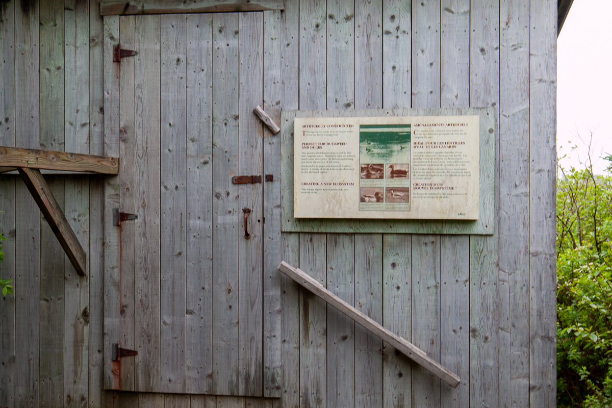 Long Pond Trail Gallery