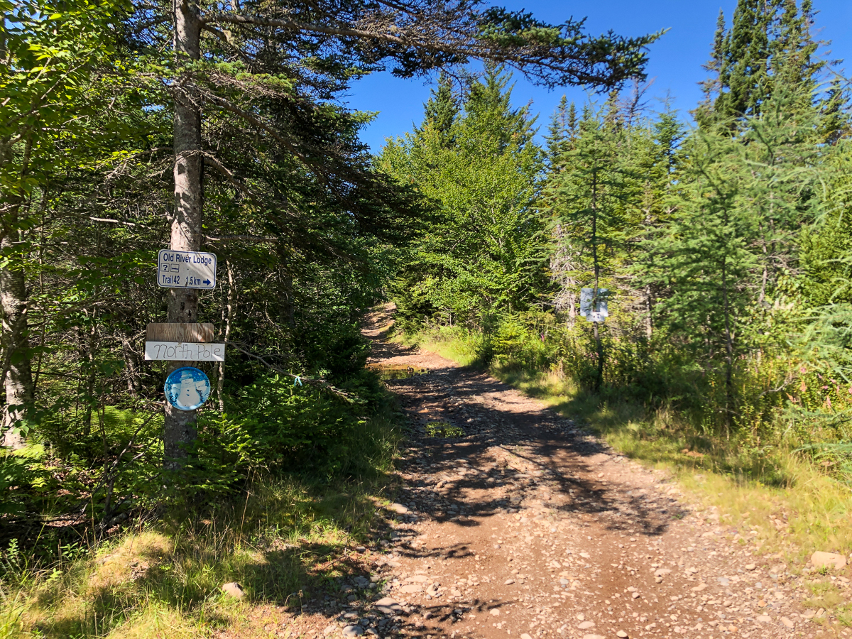 Lighthouse Trail Access - Miller Pond to Dwelley's Pond Gallery