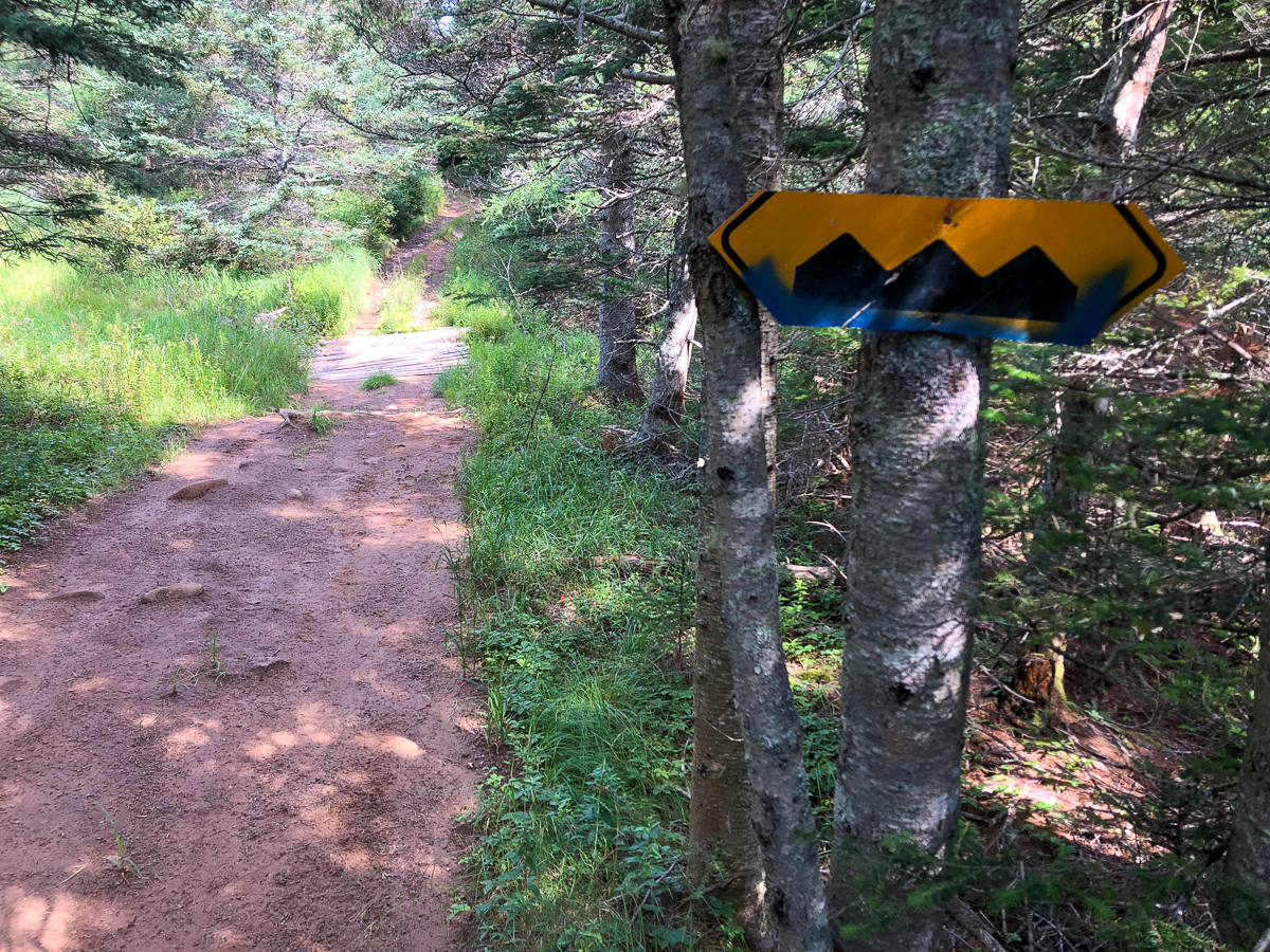 Lighthouse Trail Access - Seal Cove to Sloop Cove Gallery