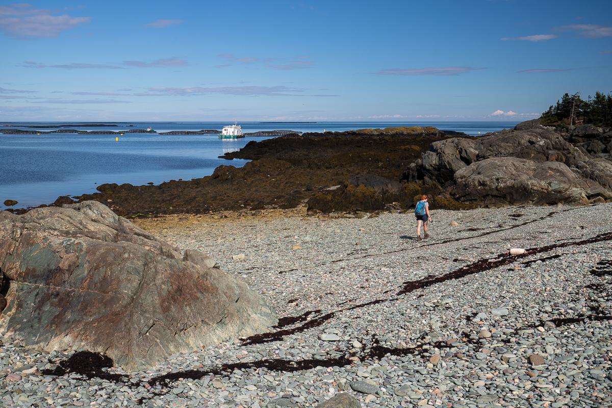 Gravel beach and fish farm on Ross Island