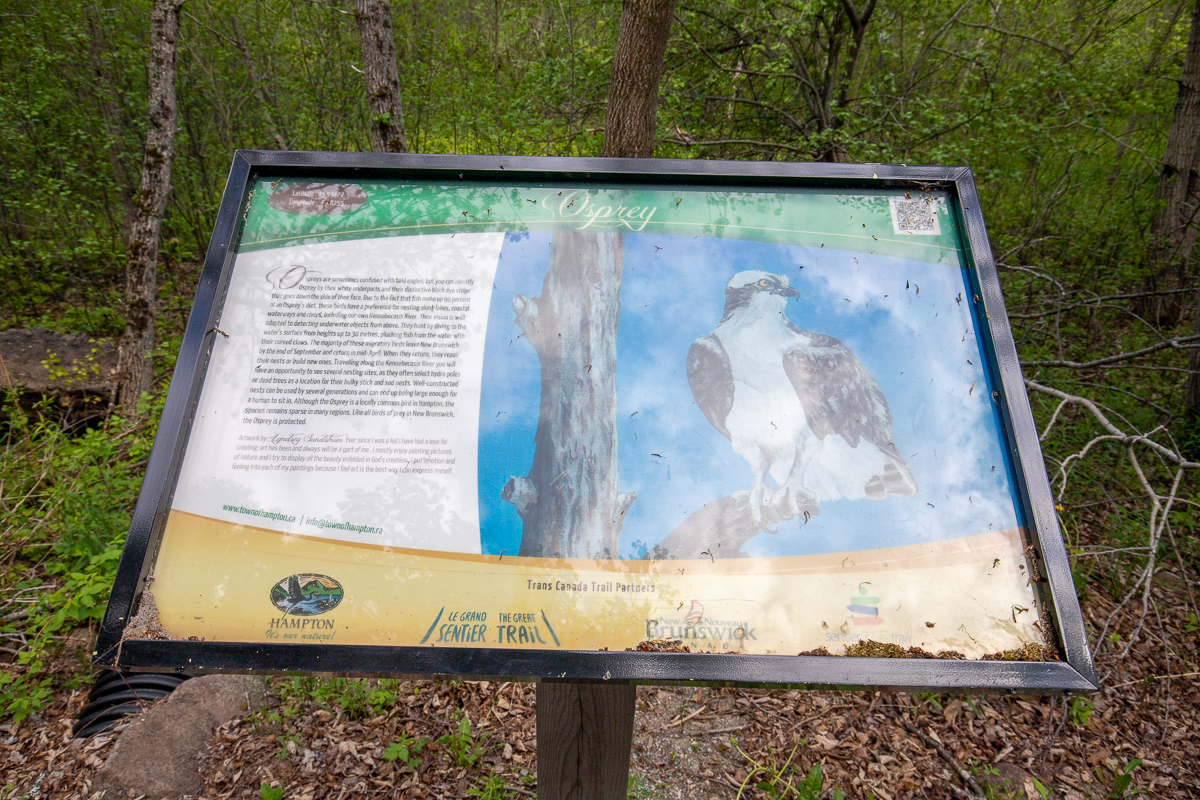 Osprey sign