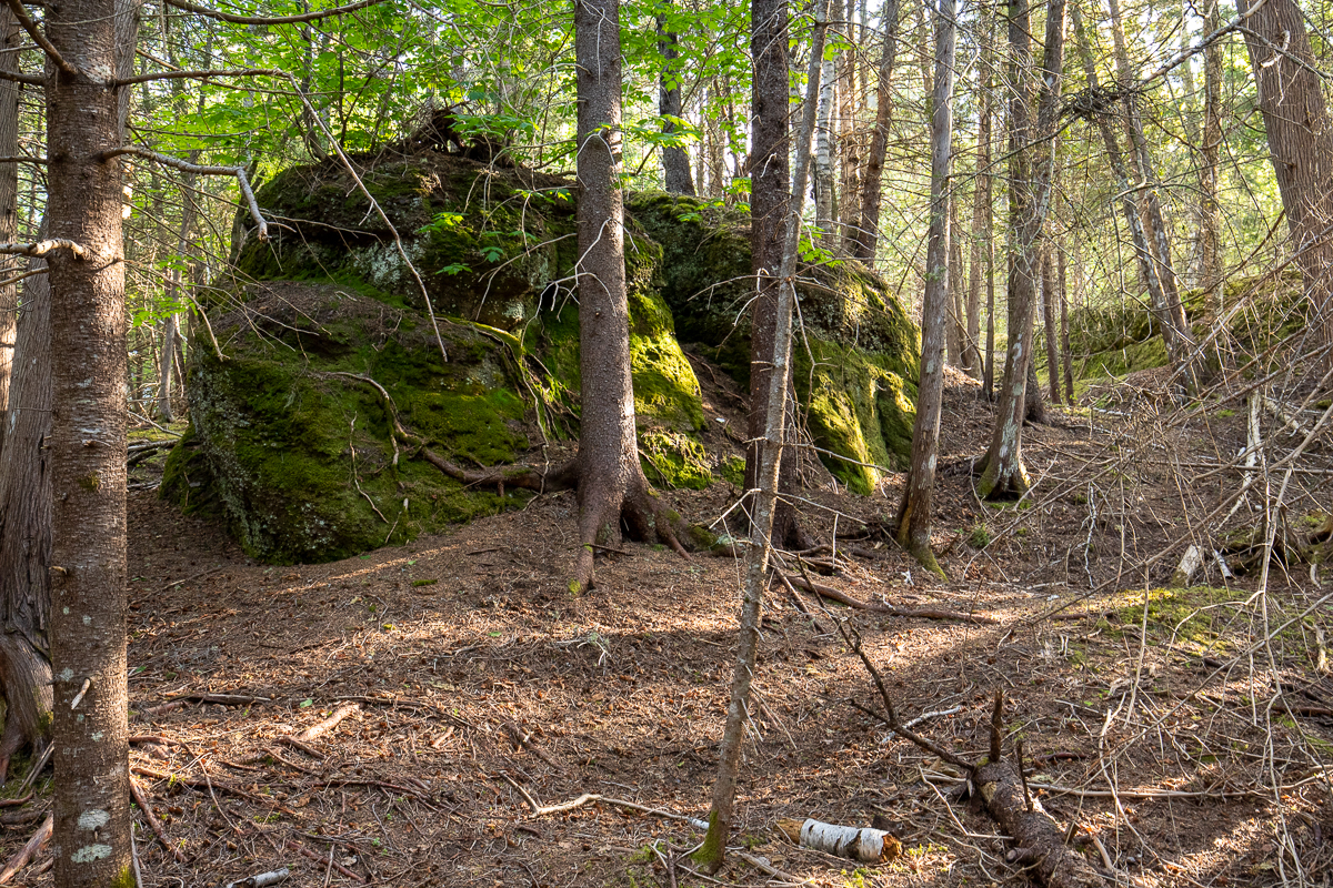A large boulder next to the trail