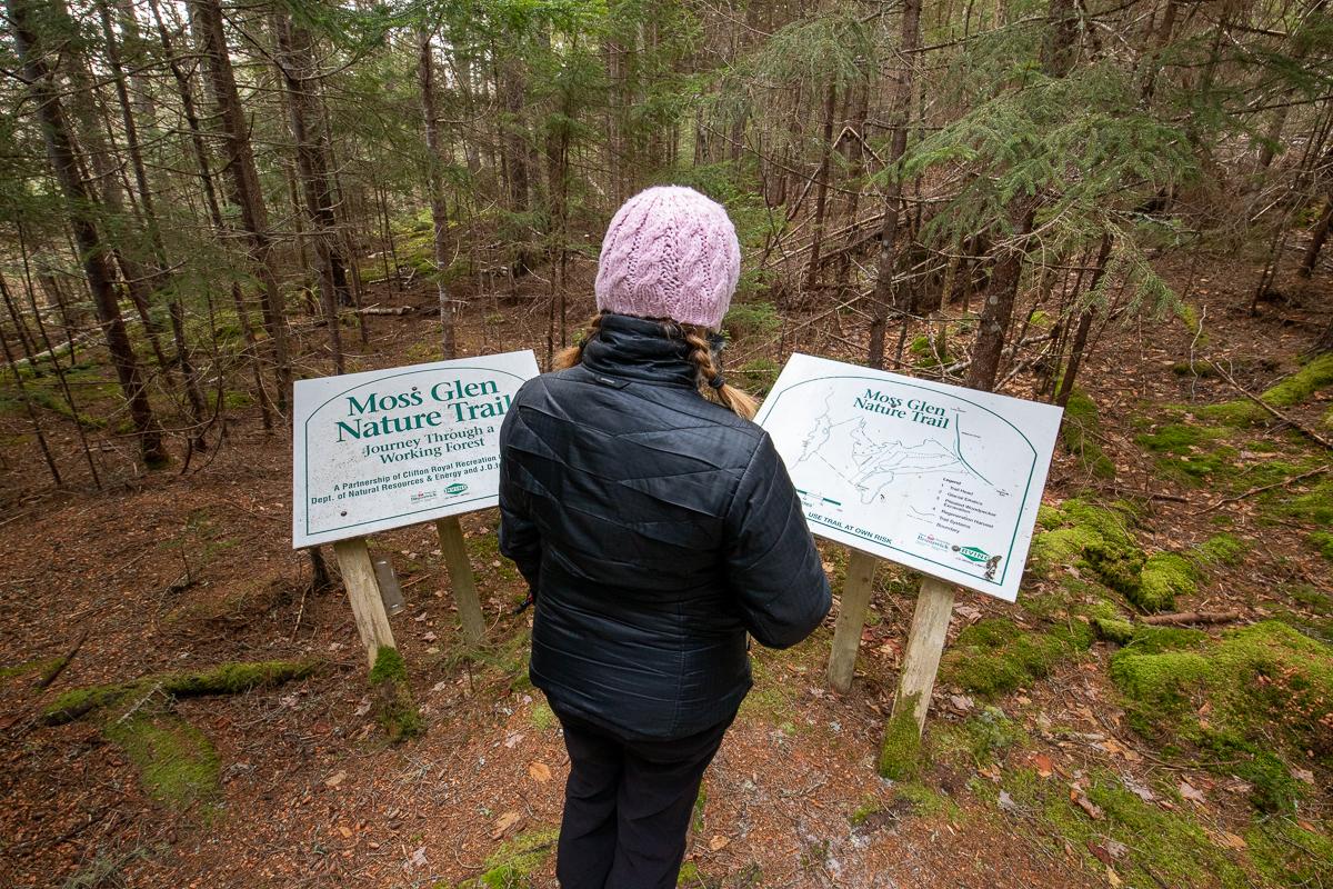 Panneaux du sentier de randonnée de Moss Glen