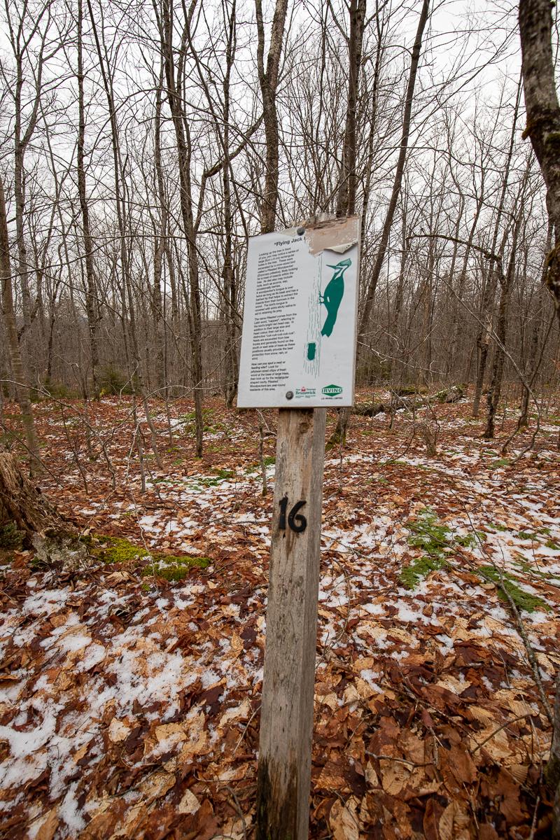 Panneau sur le grand pic le long du sentier de randonnée de Moss Glen.