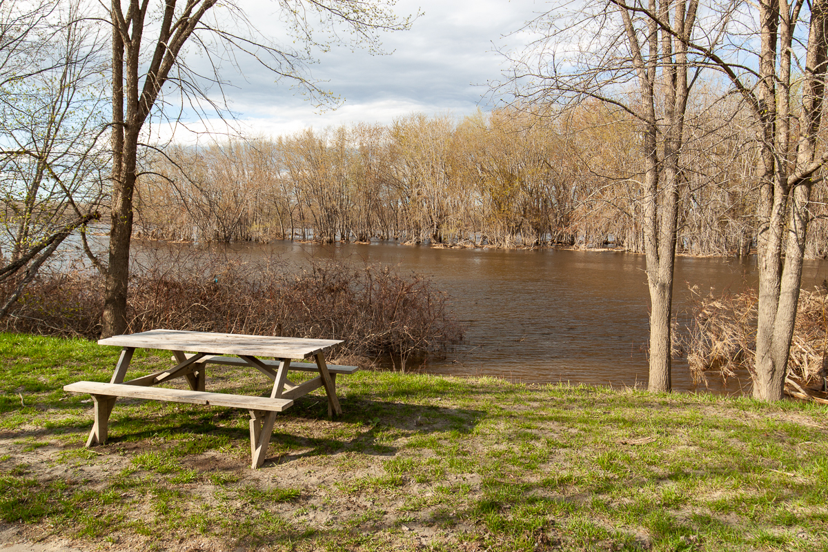 A picnic table along the MacDougall Trail