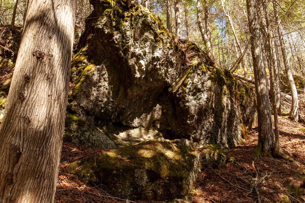Paroi rocheuse dans le parc de la rivière Hammond River