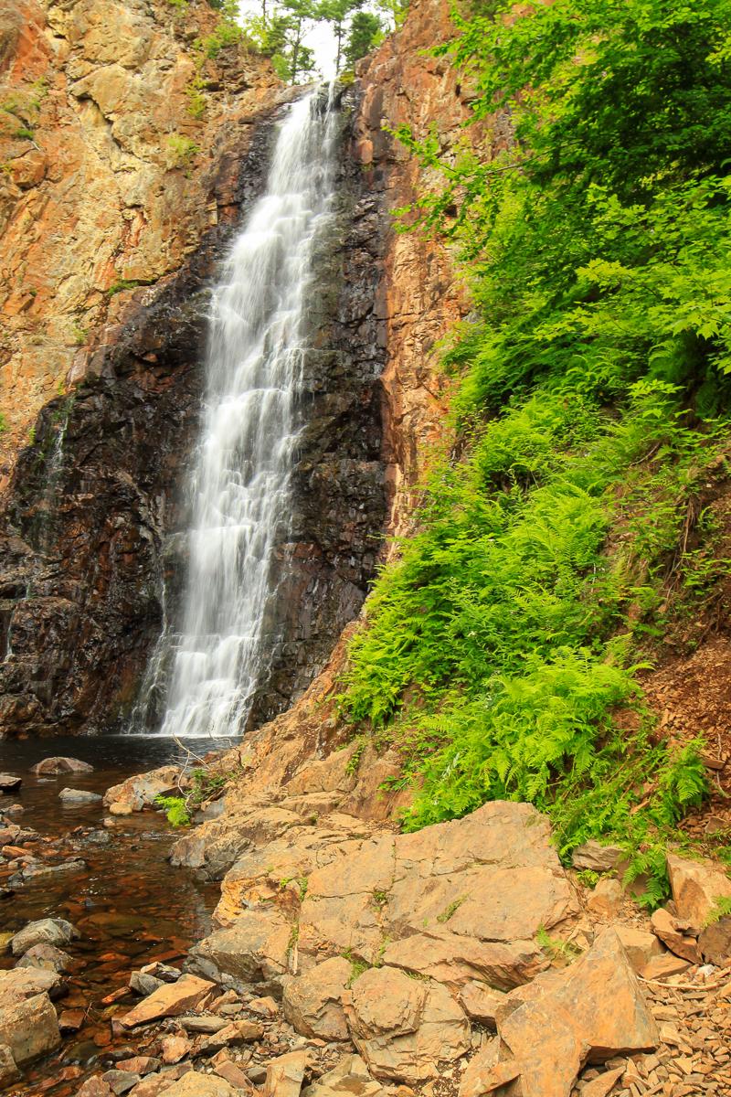 Sentier des chutes de Fall Brook